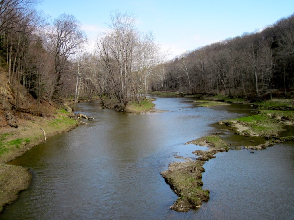 Grand River is often too high to fish after heavy rain storms, but is a great steelhead fishery when water levels drop.