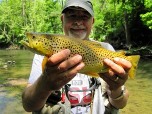 Partial summary of Division of Wildlife Brown Trout Program, 2017